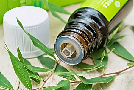 How to Put Tea Tree Oil on a Cold Sore