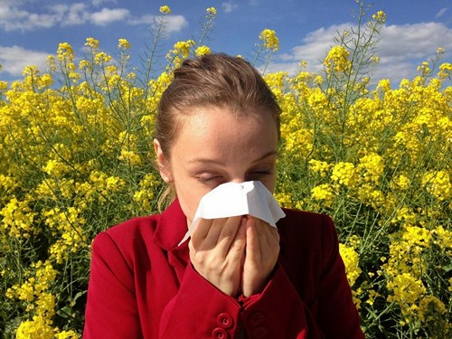 Allergy due to cold sore meds